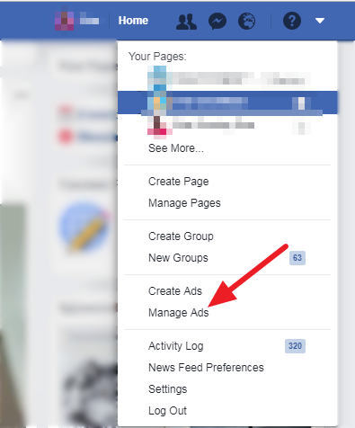 Manage Ads - using facebook ads as a part of your digital marketing campaign