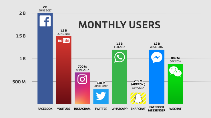 Monthly Users by Social Network Channel
