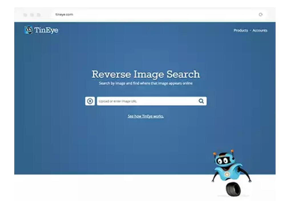Tiny Eye Image Search