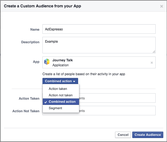 Create custom audience from app