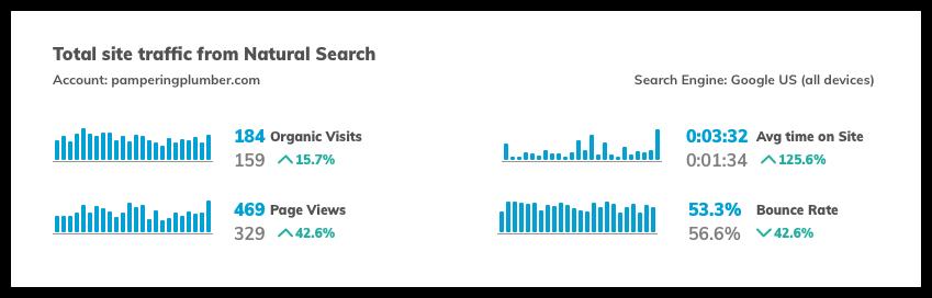 Plumber Website Page Views