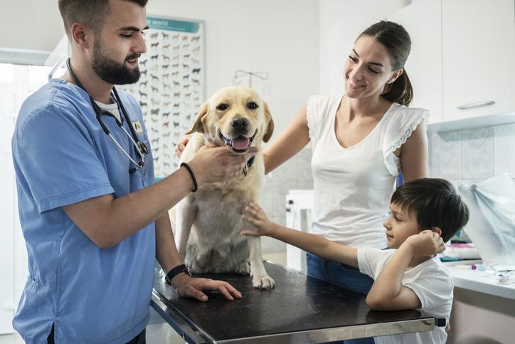 Veterinary Social Media Agency