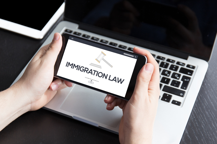 Immigration Lawyer PPC Services